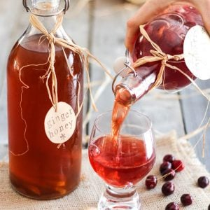 Homemade Kombucha – Make your own for a fraction of the price!