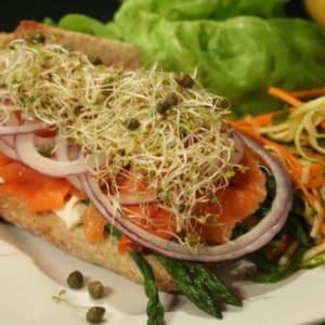 Smoked Salmon and Asparagus Sandwich