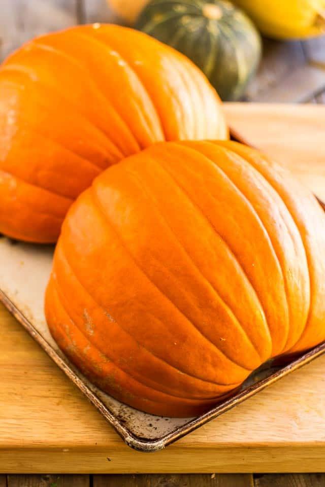 Homemade Pumpkin Puree | thehealthyfoodie.com