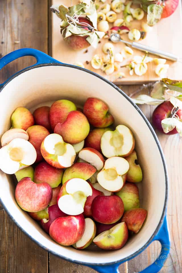 Went apple picking? This Oven Baked Applesauce is so delicious and easy to make, you'll never again wonder what to do with your overage of apples!