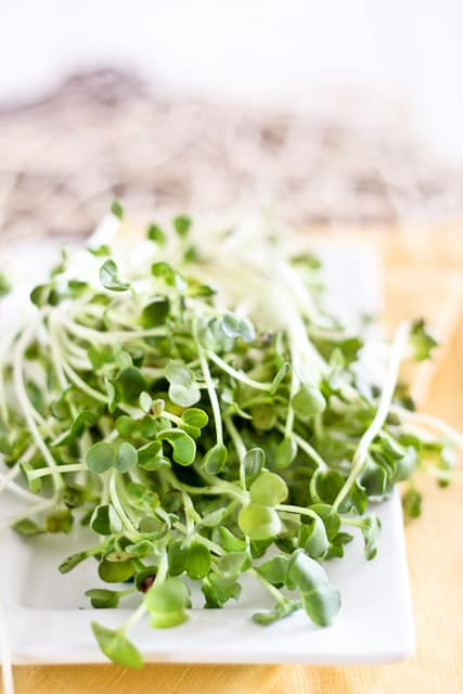 Daikon Sprouts | by Sonia! The Healthy Foodie