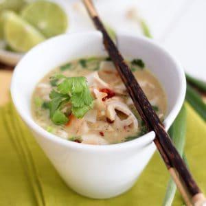 Cari-Coco Instant Chicken Soup