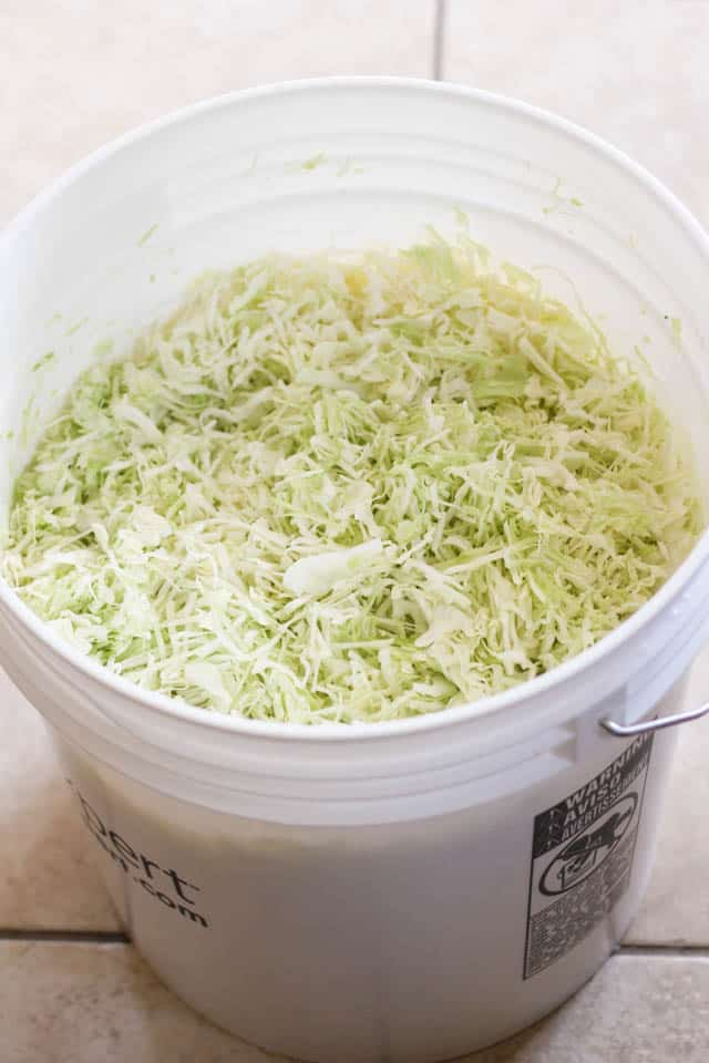 Homemade Sauerkraut Project | by Sonia! The Healthy Foodie