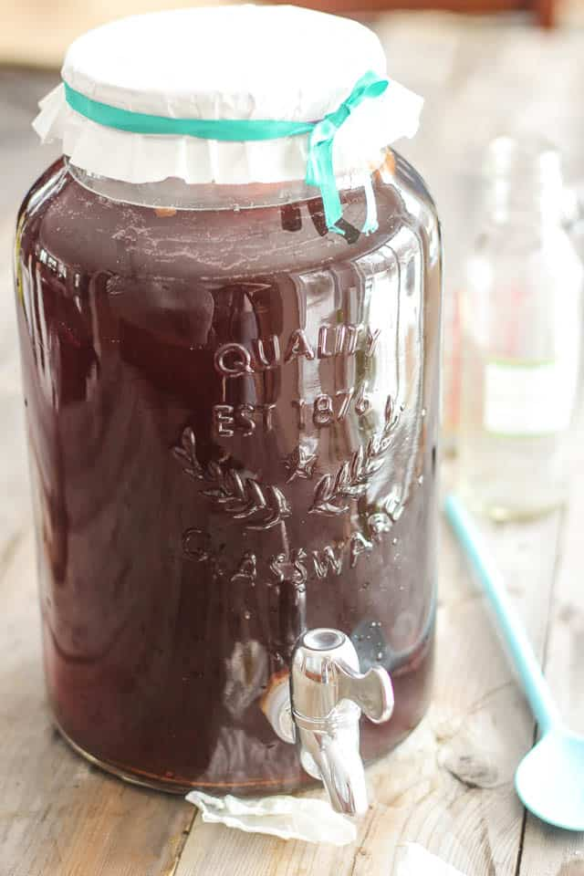 Make Kombucha Tea