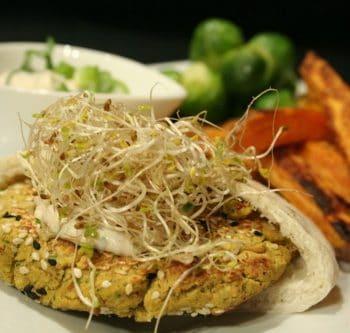 Falafel Pita