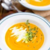 This Cream of Leek and Sweet Potato Soup is so silky and creamy, it's the perfect dish to warm your body and soul on a winter day. Best of all, it's super easy, and quick, to make!