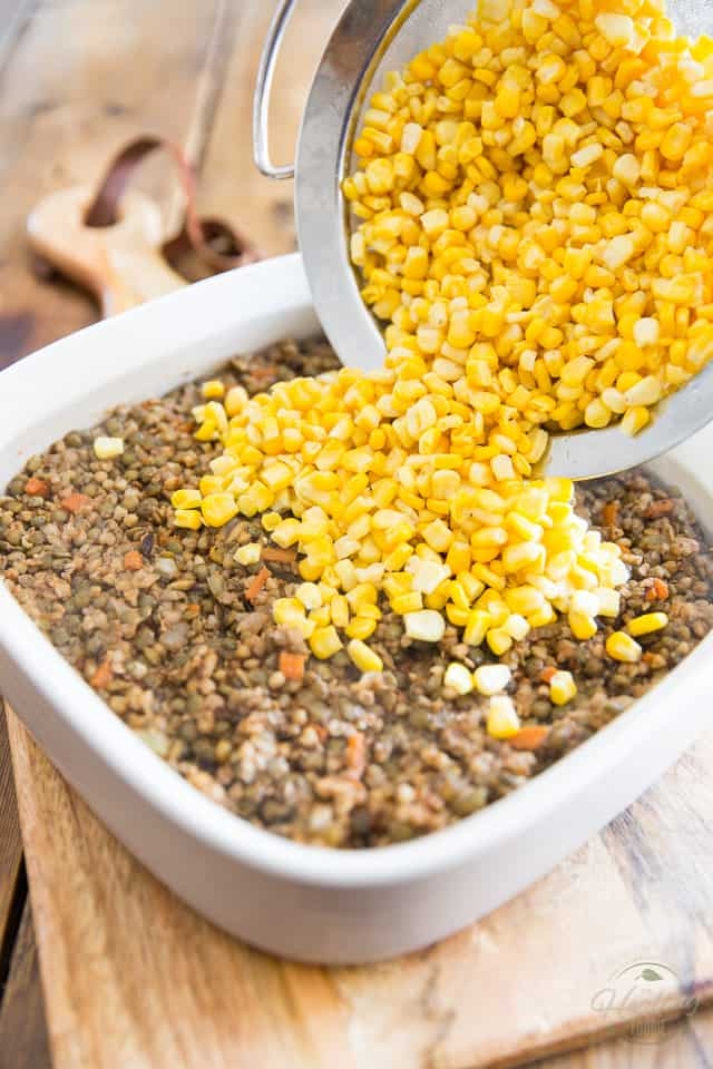 Corn is being poured out of a fined meshed sieve and onto a white ceramic baking dish containing a mixture of cooked lentils and kasha